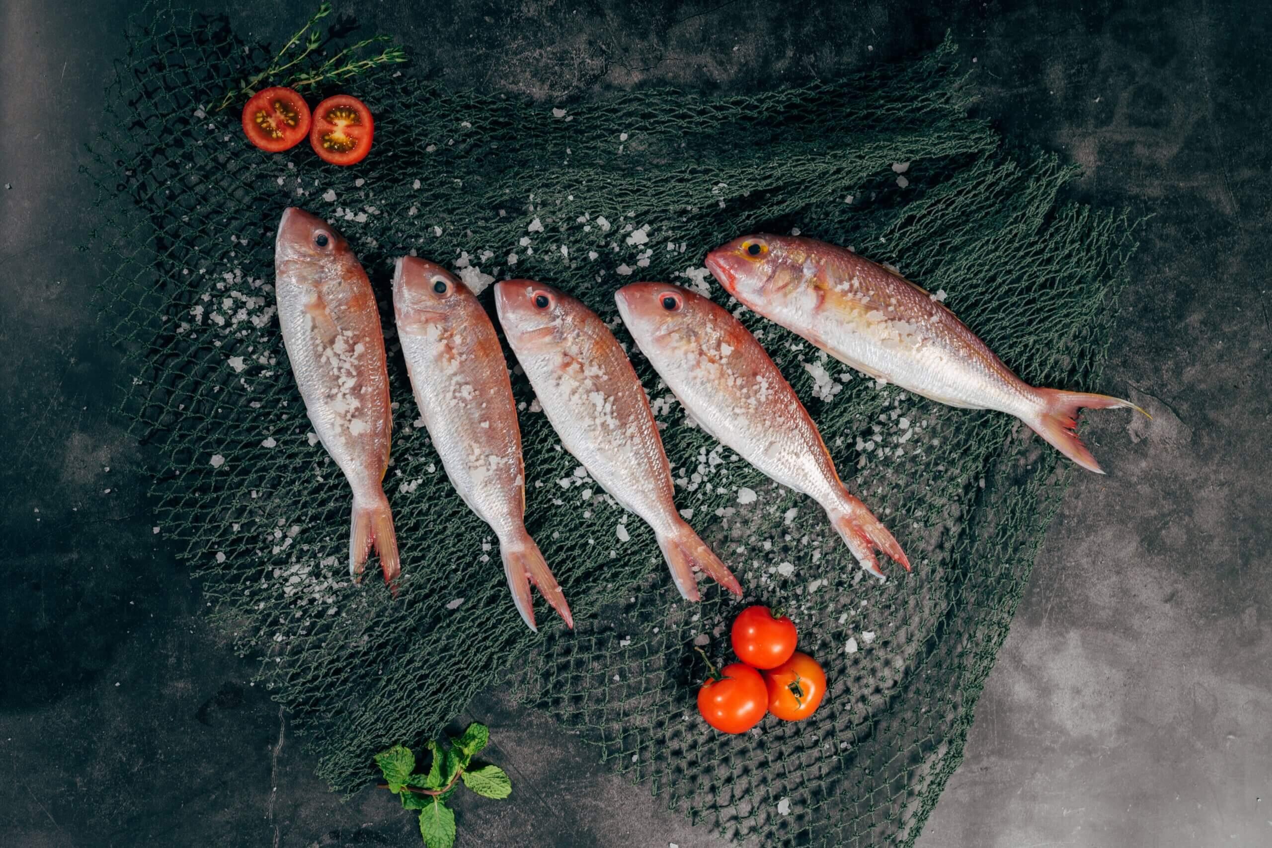 Как правильно выбирать рыбу: свежую, охлажденную, замороженную, красную
